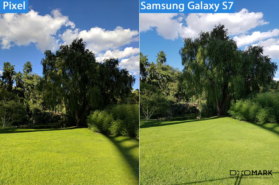 сравнение камеры Google Pixel и S7