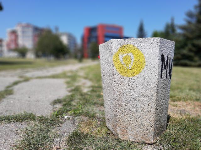 камера Motorola One Action портретный режим