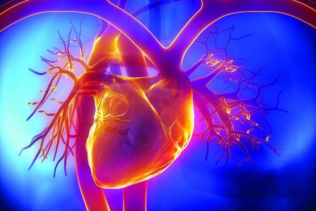 Что такое ИБС? Методы диагностики и лечения